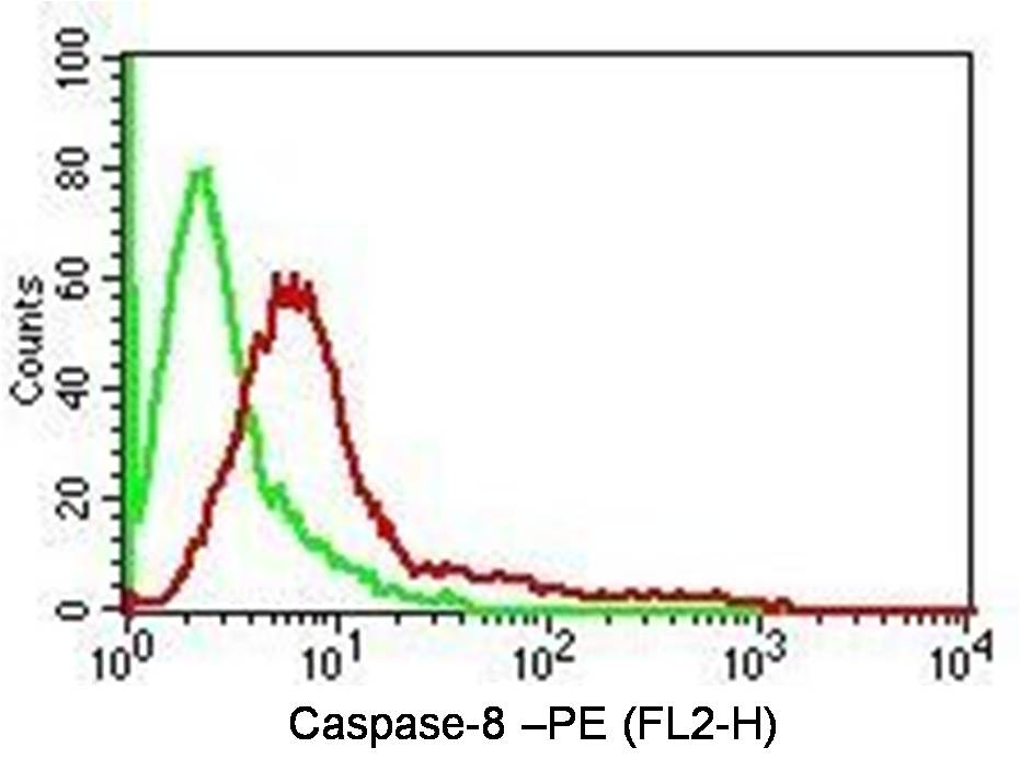 Fig-2: Intracellular Flow analysis  of Caspase-8 antibody  in Hela cells using 0.5 µg/ 10^6  cells of anti-Caspase-8  antibody (ABM14C1). Green represents isotype control; red represents anti-Caspase-8 antibody. Goat anti-mouse PE conjugate was used as secondary antibody. (Cells were fixed with 4%  paraformaldehyde for 10 min and washed with PBS by centrifuging at 1100 for 5 min followed by permeabilization for 20 min and washed again as mentioned above. Then cell were incubated with primary antibody for 45 min. and after washing the cells twice in PBS, incubated with conjugated secondary antibody for 30 min. Data acquisition was done after washing twice with PBS as mentioned above).