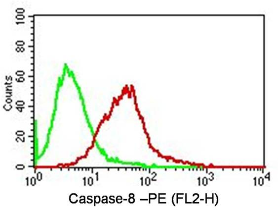 Fig-3: Intracellular Flow analysis  of Caspase-8 antibody  in Jurkat cells using 0.5 µg/ 10^6  cells of anti-Caspase-8  antibody (ABM14C1). Green represents isotype control; red represents anti-Caspase-8 antibody. Goat anti-mouse PE conjugate was used as secondary antibody. (Cells were fixed with 4%  paraformaldehyde for 10 min and washed with PBS by centrifuging at 1100 for 5 min followed by permeabilization for 20 min and washed again as mentioned above. Then cell were incubated with primary antibody for 45 min. and after washing the cells twice in PBS, incubated with conjugated secondary antibody for 30 min. Data acquisition was done after washing twice with PBS as mentioned above).