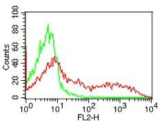 Fig-1: Cell Surface flow analysis of MHCII-DLADQ in PBMC (Lymphocyte gated) using 0.5 µg/10^6 cells. Green represents isotype control (ABEOMICS); red represents anti-hMHCII-HLADQ antibody (10-4134, clone:SPVL3). Goat anti-mouse PE conjugated secondary antibody (ABEOMICS) was used.