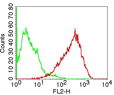 Fig-2: Cell Surface flow analysis of hCD86 in Raji using 1 µg/10^6 cells. Green represents isotype control (ABEOMICS); red represents  anti-hCD86 antibody (10-4154). Goat anti-mouse PE conjugated secondary antibody (ABEOMICS) was used.