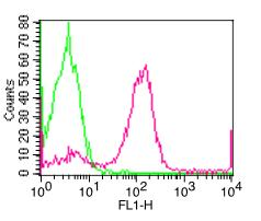 Monoclonal Antibody to Human CD23 (Clone: 152-5E5) FITC conjugated