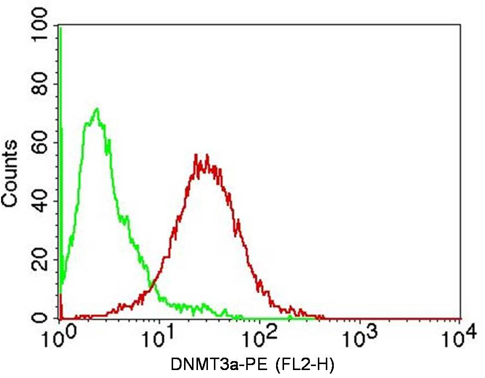 Fig-2: Intracellular flow cytometric analysis of Dnmt3a on HEK293 cells using 0.5 µg/10^6 cells of antibody (Clone: ABM13G4). Green represents isotype control; red represents anti-Dnmt3a antibody. Goat anti-mouse PE conjugate was used as secondary antibody. (Cells were fixed with 4%  paraformaldehyde for 10 min and washed with PBS by centrifuging at 1100 for 5 min followed by permeabilization for 20 min and washed again as mentioned above. Then cell were incubated with primary antibody for 45 min. and after washing the cells twice in PBS, incubated with conjugated secondary antibody for 30 min. Data acquisition was done after washing twice with PBS as mentioned above).