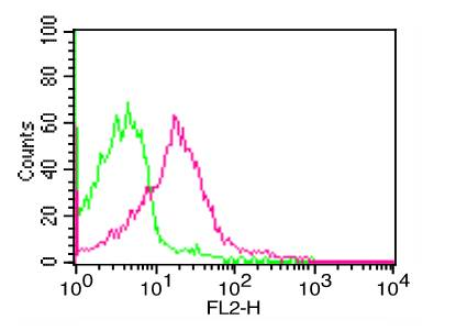 Fig-1: Cell Surface FLOW analysis of PD-L1 in PHA treated human PBMC using 1 µg of PD-L1 antibody (Clone: ABM4E54). Green represents isotype control; red represents anti-PD-L1 antibody. Goat anti-mouse PE conjugate was used as secondary antibody.