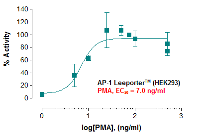 Fig-1: Induction of AP-1 activity by phorbol 12-myristate 13-acetate in AP-1 Leeporter™ – HEK293 cells.