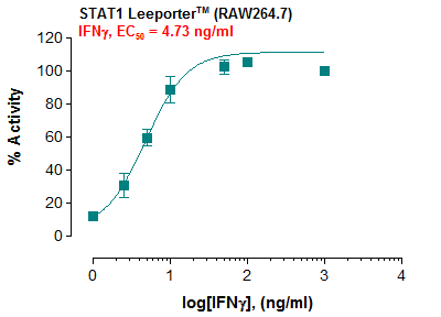 STAT1 Leeporter™ Luciferase Reporter-RAW264.7 Cell Line