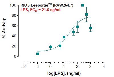 iNOS Leeporter™ Luciferase Reporter-RAW264.7 Cell Line