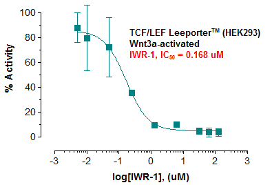 TCF/LEF Leeporter™ Luciferase Reporter-HEK293 Cell Line