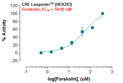 CRE Leeporter™ Luciferase Reporter-HEK293 Cell Line