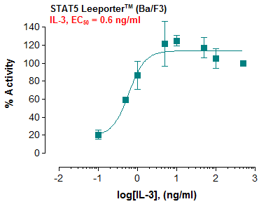 STAT5 Leeporter™ Luciferase Reporter-Ba/F3 Cell Line