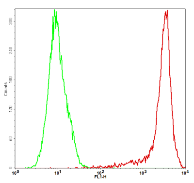 Fig-1: Detection of mouse CD73 in the CHO-K1/mCD73 stable cell line by Flow Cytometry [Cell surface staining]. CHO-K1 cells (Green); CHO-K1/mCD73 cells (Red).
