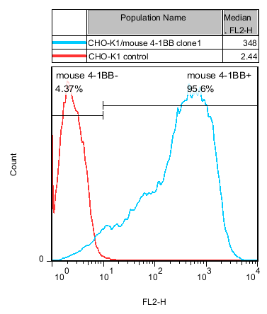 4-1BB Stable Cell Line-CHO-K1-Mouse