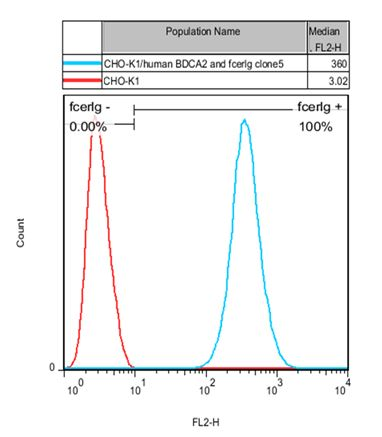 BDCA2 and FcER1G Stable Cell Line-CHO-K1-Human