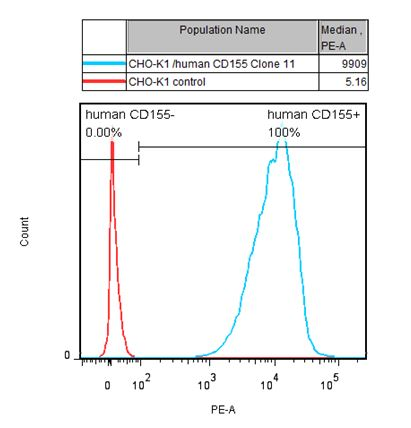 CD155 Stable Cell Line-CHO-K1-Human(Currently Unavailable)