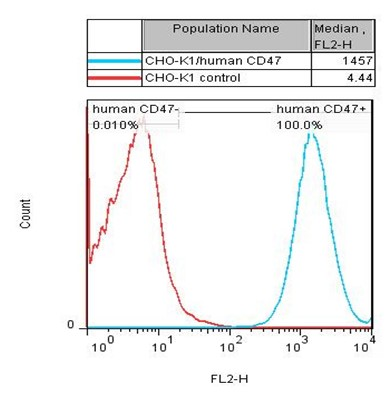CD47 Stable Cell Line-CHO-K1-Human