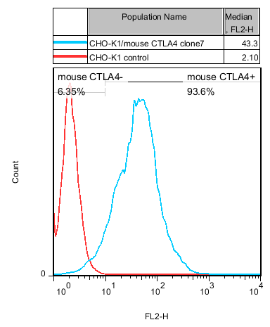 CTLA4 Stable Cell Line-CHO-K1-Mouse