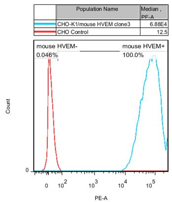HVEM Stable Cell Line-CHO-K1-Human(Currently Unavailable)