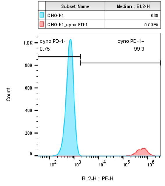 Figure 1: Flow cytometry analysis of cyno PD-1 expression in CHO-K1/cyno PD-1 cells.