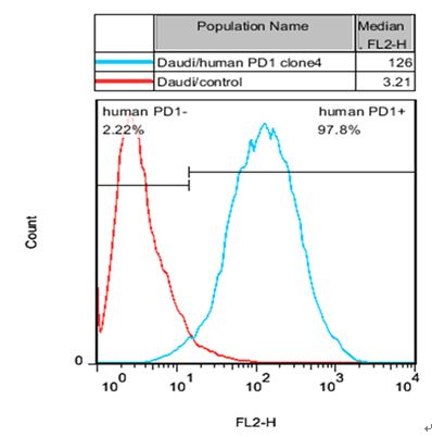 PD1 Stable Cell Line-Daudi-Human(Currently Unavailable)