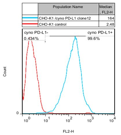 PD-L1 Stable Cell Line-CHO-K1-Cynomolgus