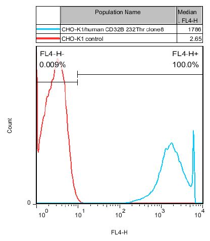CD32B 232Thr Stable Cell Line-CHO-K1-Human