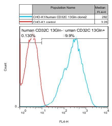 CD32C 13Gln Stable Cell Line-CHO-K1-Human