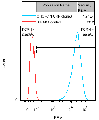 FcRn Stable Cell Line-CHO-K1-Human(Currently Unavailable)