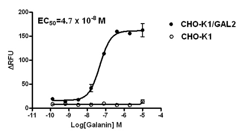 GAL2 Stable Cell Line-CHO-K1-Human