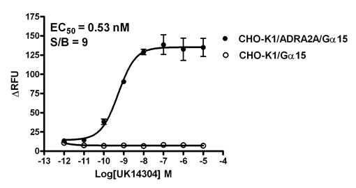 G alpha 15 Stable Cell Line-ADRA2A-CHO-K1-Human