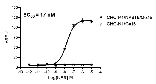 G alpha 15 Stable Cell Line-NPS1b-CHO-K1-Human