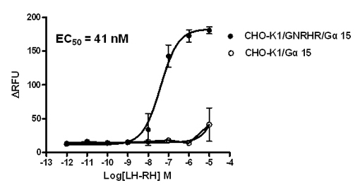 G alpha 15 Stable Cell Line-GNRHR-CHO-K1-Human