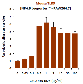 Fig-1: Induction of mouse TLR9 activity by CpG ODN 1826.