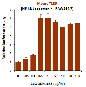 Fig-1: Induction of mouse TLR9 activity by CpG ODN 1668.