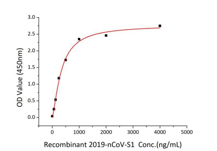 Recombinant SARS-CoV-2 Spike S1 Protein (His Tag)