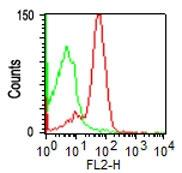 Fig.1: Cell Surface flow analysis of anti-hCD43 antibody (36-3009) in PBMC (Lymphocytes gated) using 0.5 µg/10^6 cells.  Green represents isotype control (ABEOMICS); red represents anti-hCD43 antibody. Goat anti-mouse PE conjugated  secondary antibody was used (ABEOMICS).