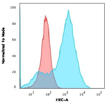 Fig. 6: Flow Cytometric Analysis of A549 cells using S100A4 Mouse Monoclonal Antibody (S100A4/1482) followed by Goat anti-Mouse IgG-CF488 (Blue); Isotype Control (Red).
