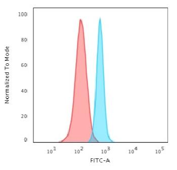 Fig. 5: Flow Cytometric Analysis of HeLa cells using Spectrin beta III Recombinant Rabbit Monoclonal (SPTBN2/3142R) followed by Goat anti-rabbit IgG-CF488 (Blue); Isotype Control (Red).
