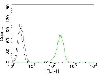 Fig. 1: Flow Cytometry of human CD71 on K562 cells. Black: cells alone; Grey: Isotype Control; Green: CF488-labeled CD71 Monoclonal Antibody (66IG10).