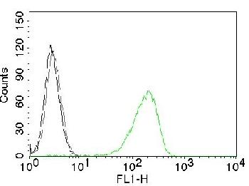 Fig. 1: Flow Cytometry of human CD71 on Jurkat cells. Black: cells alone; Grey: Isotype Control; Green: CF488-labeled CD71 Monoclonal Antibody (TFRC/1059).
