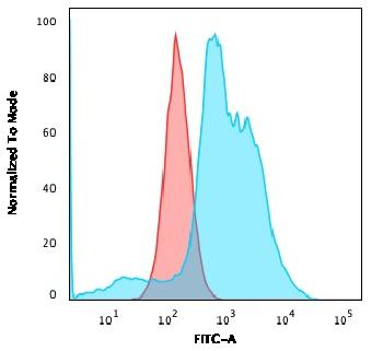 Fig. 1: Flow Cytometric Analysis of SKBR-3 cells using B7-H4 Mouse Monoclonal Antibody (B7H4/1788) followed by goat anti-Mouse IgG-CF488 (Blue); Isotype Control (Red).