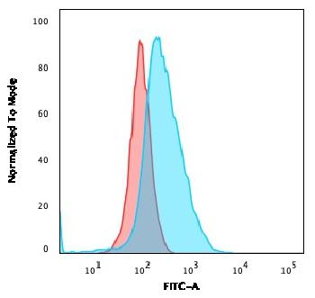 Fig. 3: Flow Cytometric Analysis of U2OS cells using CD40 Mouse Monoclonal Antibody (C40/2383) followed by goat anti-Mouse IgG-CF488 (Blue); Isotype Control (Red).